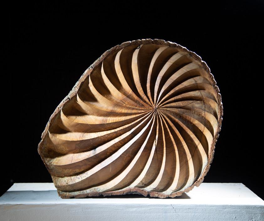 Half space spiral