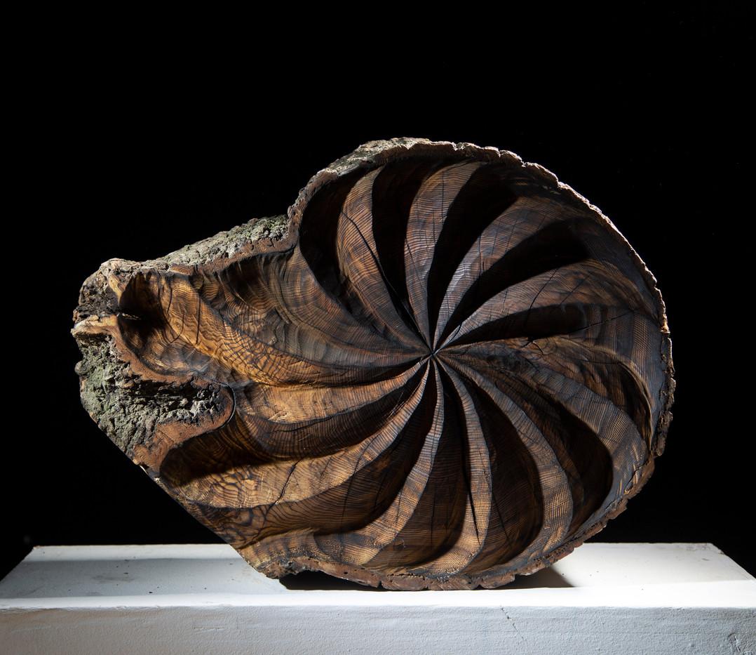 Scorched spiral