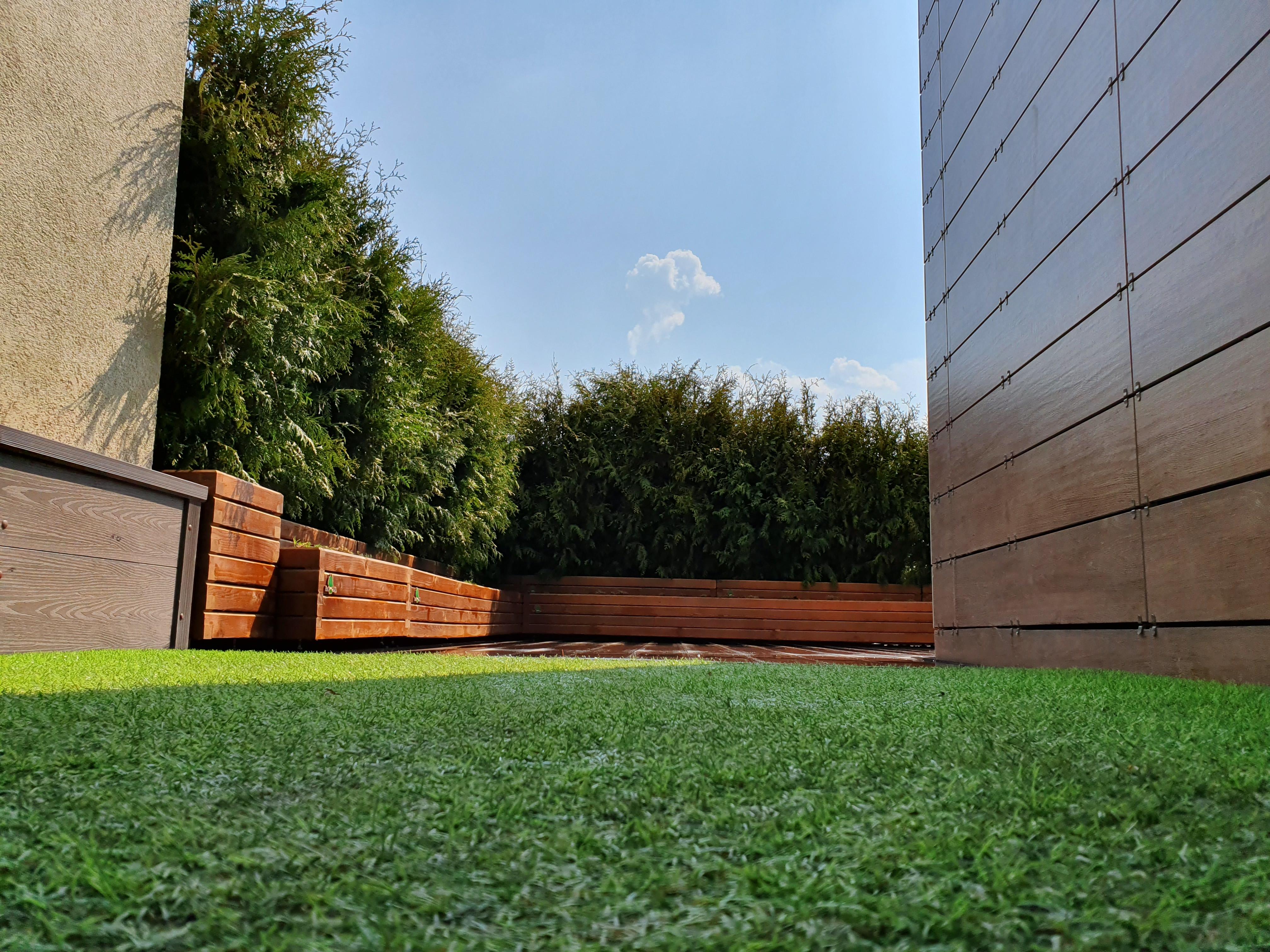 Живая изгородь на крыше