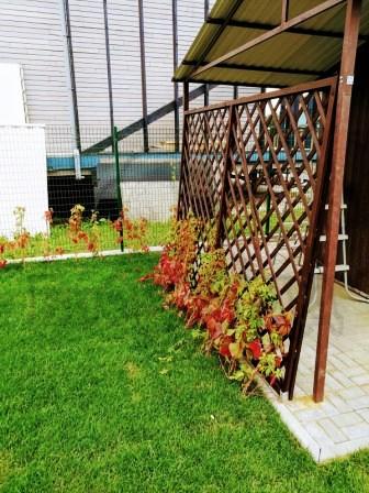 Кострово - комплексное озеленение