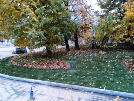Парк Сокольники - благоустройство