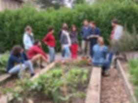 Atelier pratique et test de stabilité structurale du sol lors de la formation permaculture de Baptiste Pasteur Tellus