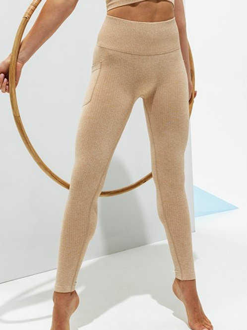 TR211 Women's TriDri® ribbed seamless 3D fit multi-sport leggings