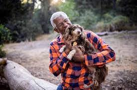 Animais de estimação são auxílio no tratamento oncológico