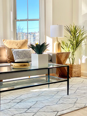 Contemporary color scheme living room staging