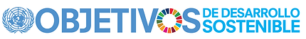 R_SDG_logo_with_UN_Emblem_horizontal_rgb