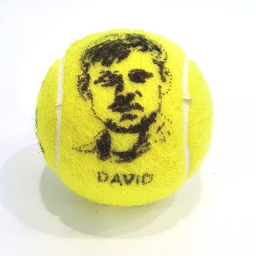 David Goffin Tennisballselfie