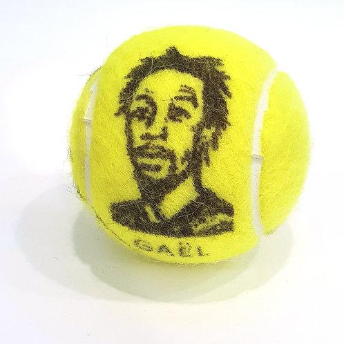 Gaël Monfils Tennisballselfie