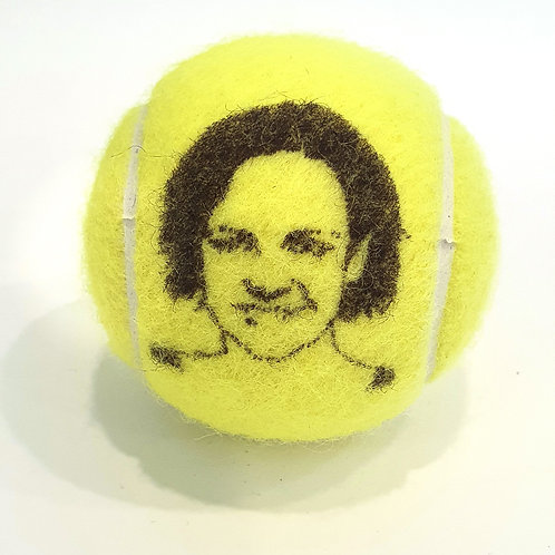 Lindsay Davenport Tennisballselfie