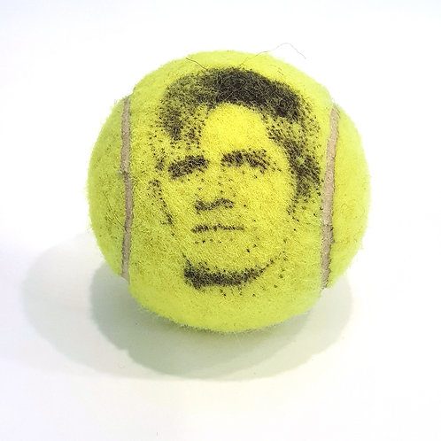 Kevin Anderson Tennisballselfie