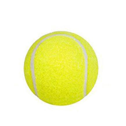 Dein Tennisballselfie