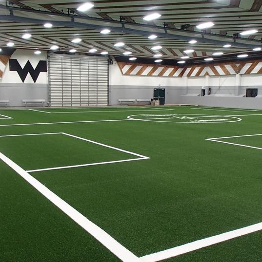 Indoor Artificial Turf Field
