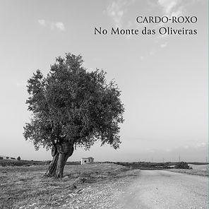 monte das oliveiras6.jpg