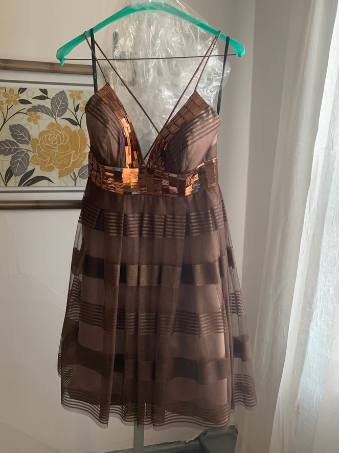 Brown and Copper Short