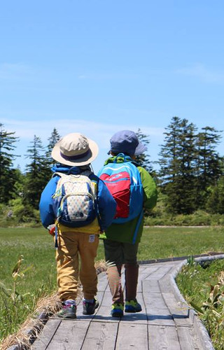 Shinsen Marsh Trek
