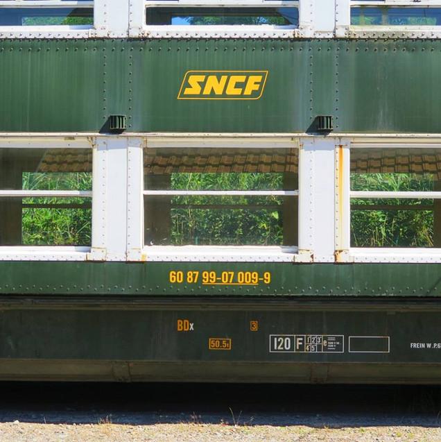 2N Eco.jpg
