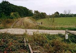 Schygulla (2)