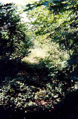 Ligne 08 1997 (4)