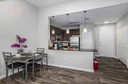 Furnisihed Apartment in Dallas (5)