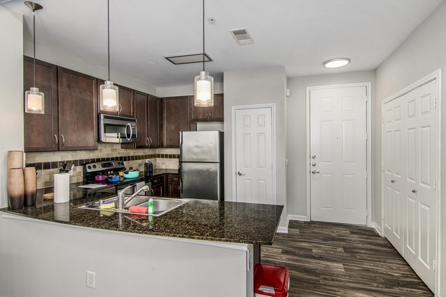 Furnisihed Apartment in Dallas (6)