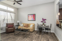 Furnisihed Apartment in Dallas (1)