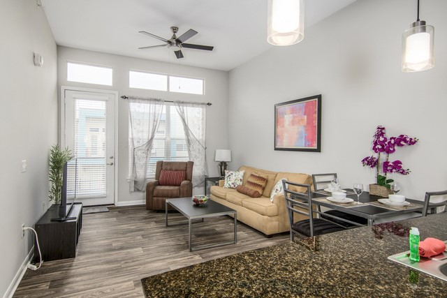 Furnisihed Apartment in Dallas (4)