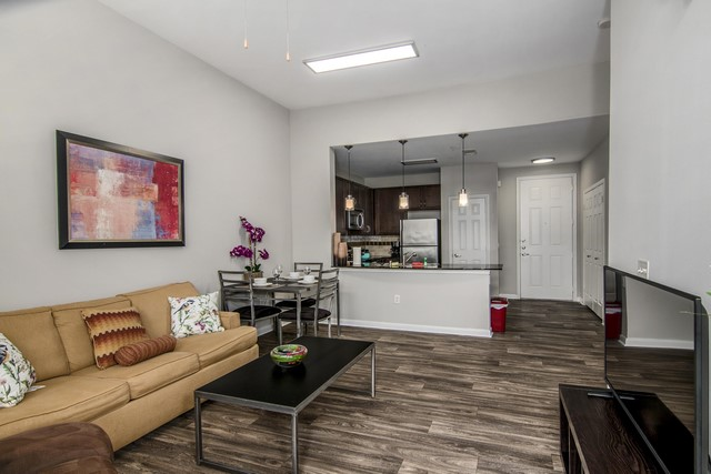 Furnisihed Apartment in Dallas (3)