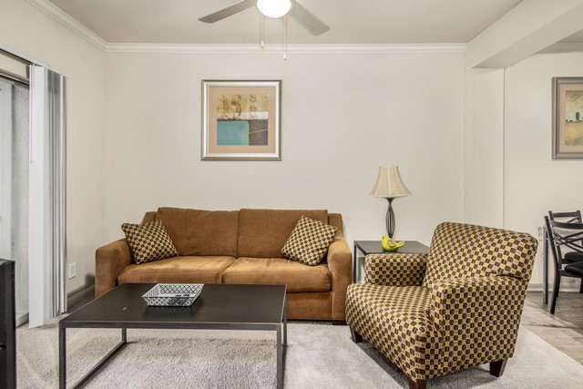 Furnished Apartments Deep Ellum  (5)