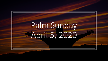 Palm sunday post 2.png