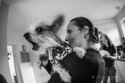 Kralova kone, pes, ludia-40.jpg
