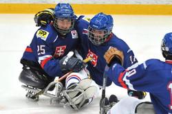 sledge hockey.jpg