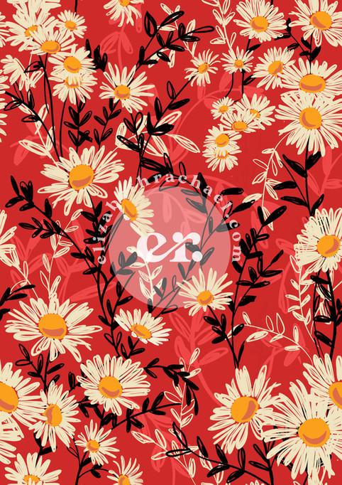 Red Daisy print by Elizabeth Rachael