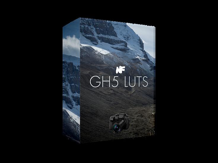 Lumix GH5 LUTs