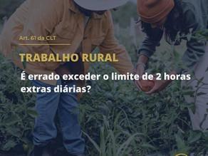 Trabalho Rural