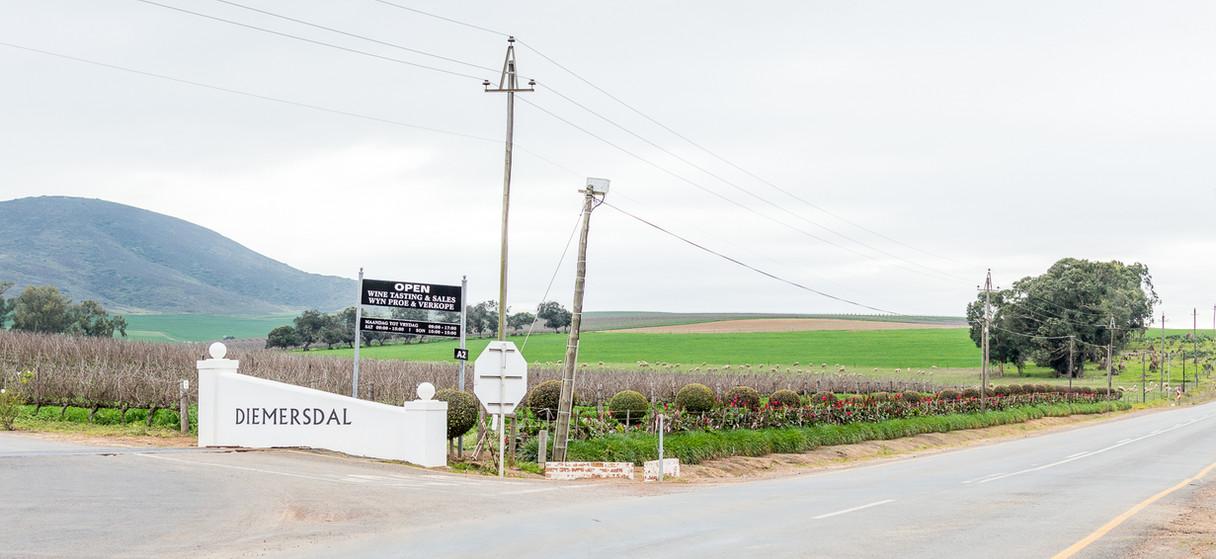 Diemersdal Wine Farm