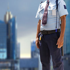 security-guard_51195-640.jpg