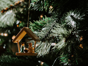 """How To Find Joy in a """"Covid-19 Christmas"""""""