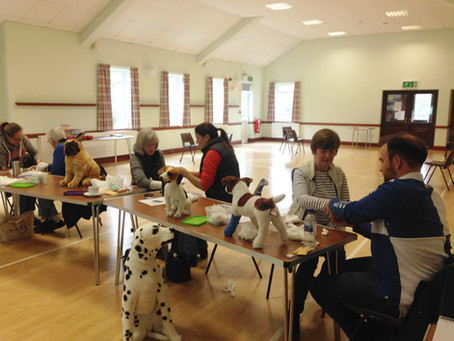 Highlighting the Importance of Dog First Aid Skills
