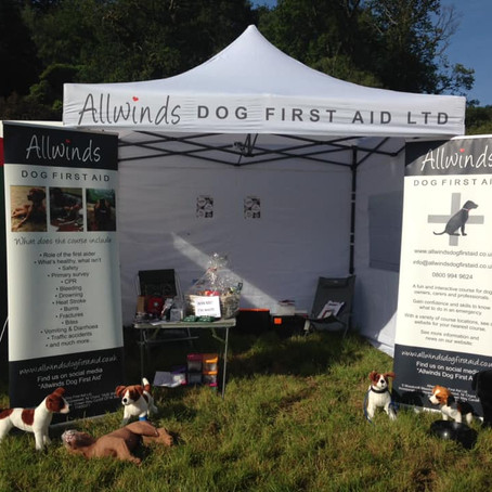 Allwinds at Dogfest 2019!