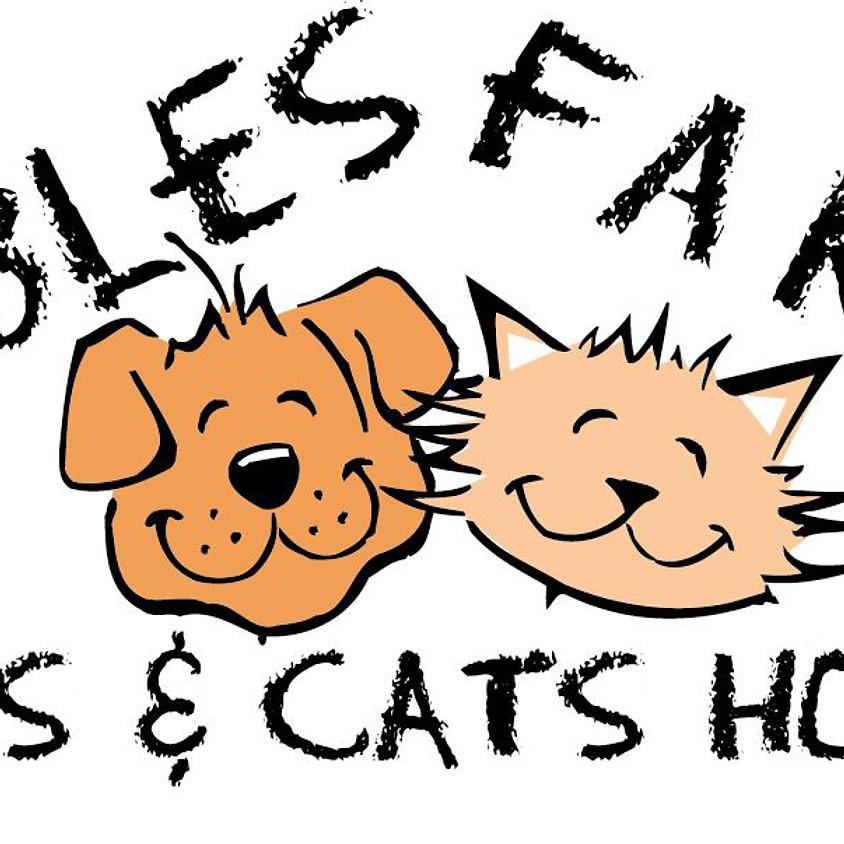 Allwinds at Gables Farm Dog & Cat Home