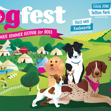 Allwinds exhibiting at DogFest 2019
