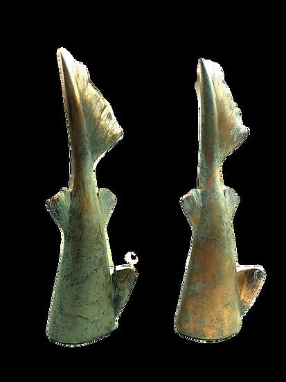 Rabo de Tubarão(cada)