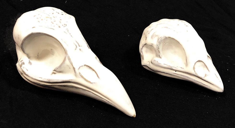 Fóssil pássaro M
