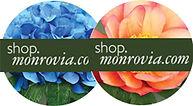shop monrovia.jpg