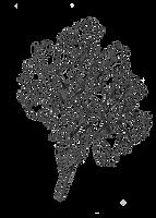 Dessin noir et blanc sarasin Confluences Ingénieurs conseil