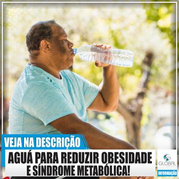 A ingestão de água pode reduzir a obesidade e a síndrome metabólica.