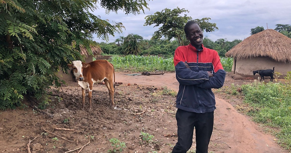 Denis in rural Uganda smiles and shows off a brown and white calf.