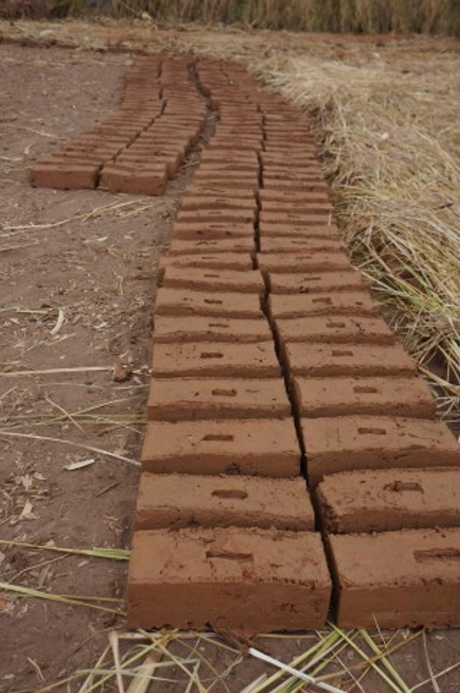 Bricks drying in the sun