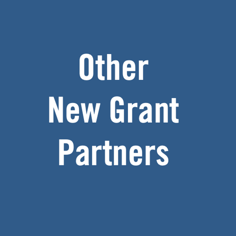 Other New Grant Partners - November 2020
