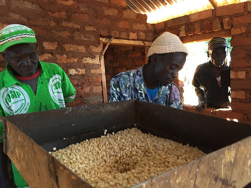Collective Prosperity: New Warehouse for Crops in Malawi